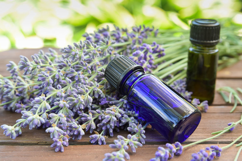 Essential oils for the sensitive child